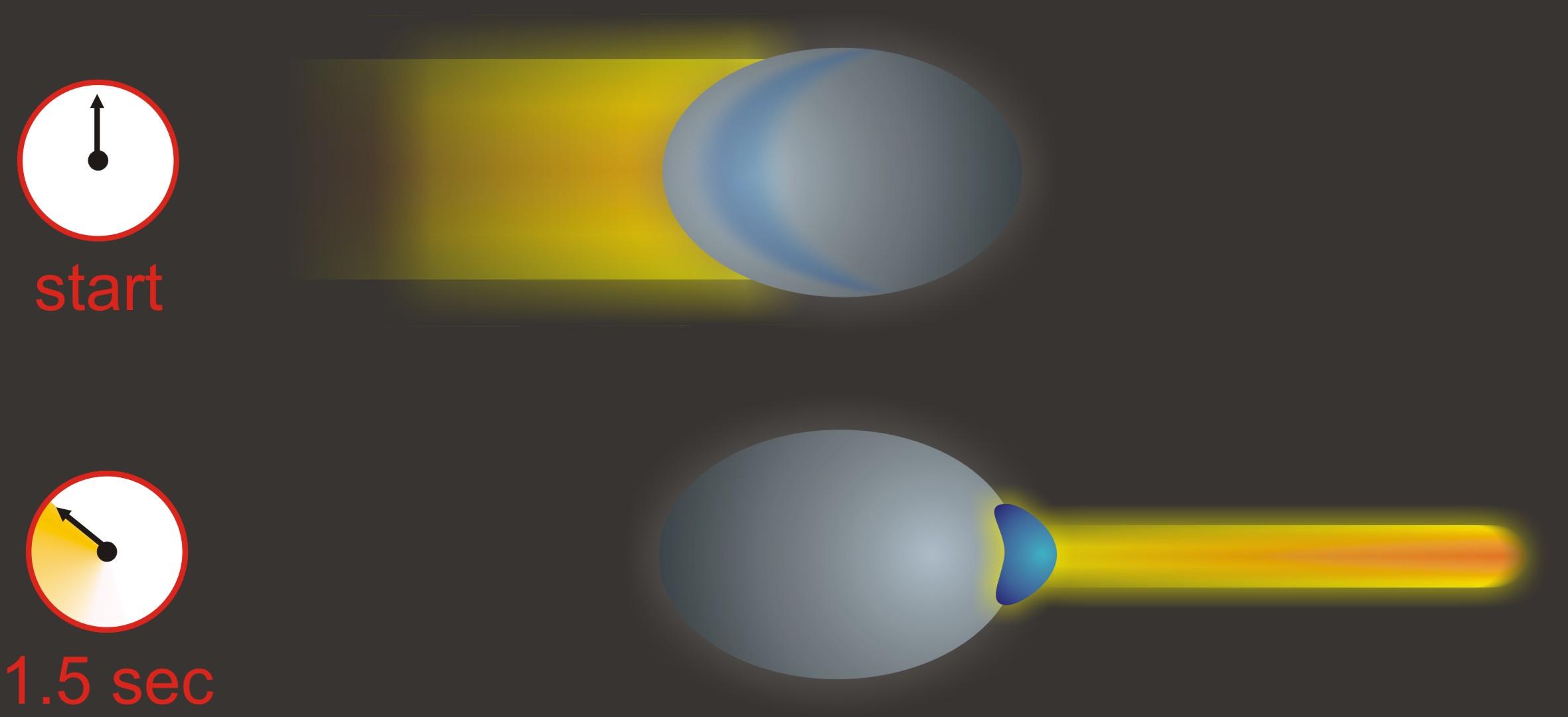 spomalenie svetelného lúča v ultra-studenom zhluku atómov sodíka  vo vakuu